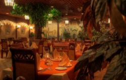 ресторан Черепаха 5