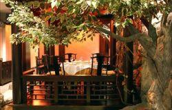 ресторан Джунго 5
