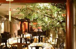 ресторан Джунго 6