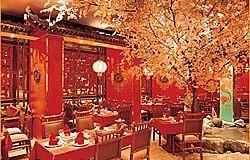 ресторан ки-ка-ку 3