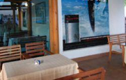 ресторан нептун и русалка 1