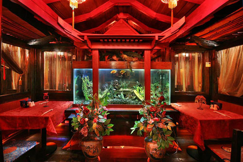 Мама Тао, Москва - отзывы о ресторанах - TripAdvisor